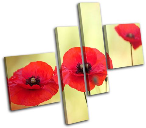 Poppy Field Flowers Floral - 13-1136(00B)-MP02-LO